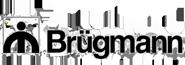брюгманн